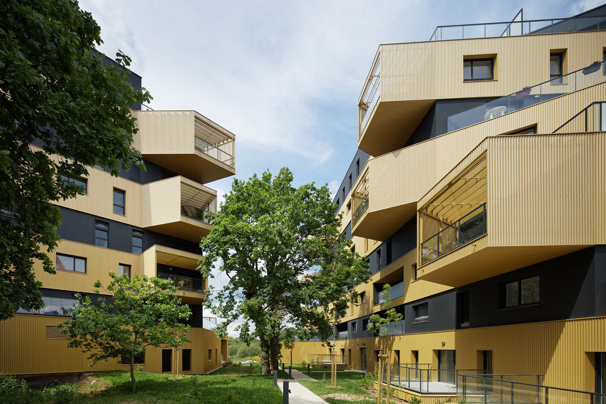 Social Housing: 60 Examples in Plan and Section